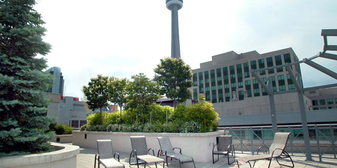 Downtown Toronto Executive Rentals Icon Rooftop Terrace
